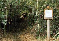 大塚古墳の写真の画像