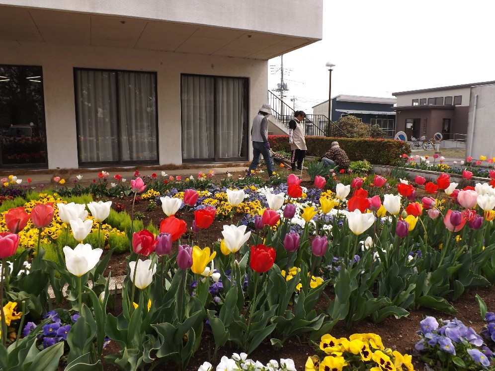 H26花と緑いっぱい③