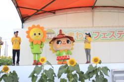 ひまわりフェス1の画像
