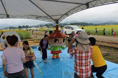 益子のひまわり祭り02の画像